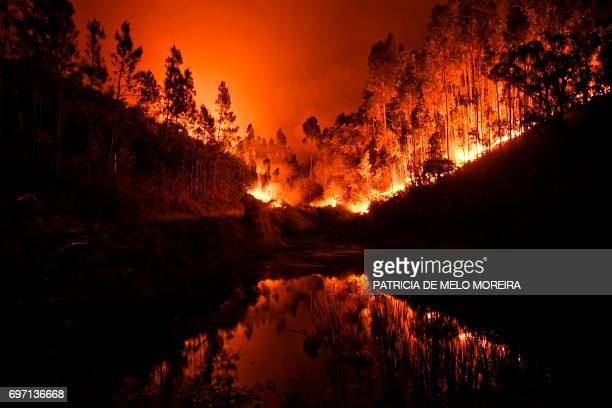 TOPSHOT A wildfire is reflected in a stream at Penela Coimbra central Portugal on June 18 2017 A wildfire in central Portugal killed at least 25...