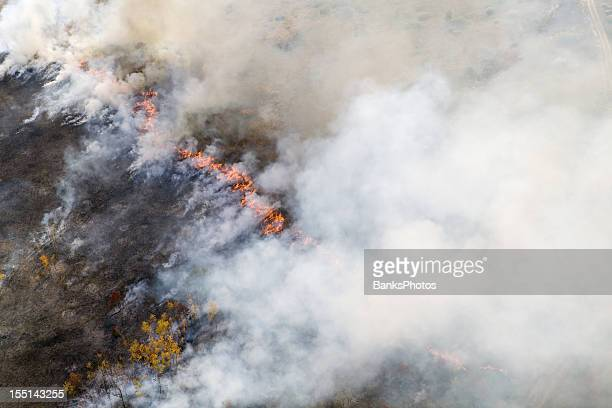 wildfire line with flames and smoke aerial - forest fire stock pictures, royalty-free photos & images