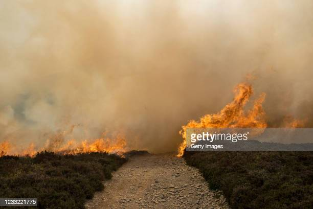 Wildfire rages across the moorland of the Clwydian Range, above the village of Rhewl, Llangollen, on June 1, 2021 in North Wales, United Kingdom....