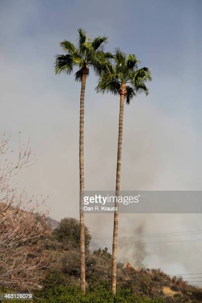 Wildfires burn through hillsides on January 16 2014 in Azusa California Authorities have stated that three people have been charged with recklessly...