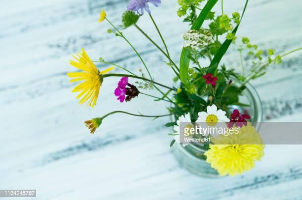 wildflowers in preserving jar - fleurs des champs photos et images de collection