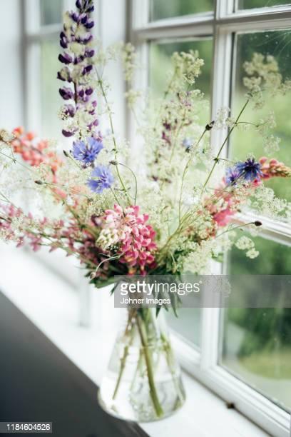 wildflowers in vase - midsommarblomster bildbanksfoton och bilder