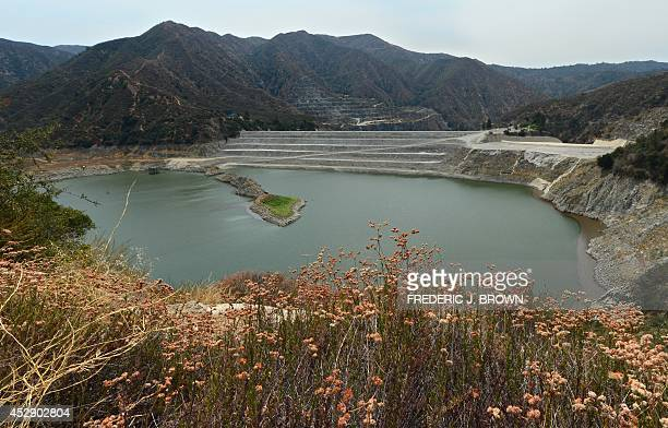 Wildflowers line a hillside looking down onto the San Gabriel Reservoir or San Gabriel Dam which provides flood control groundwater recharge flows...