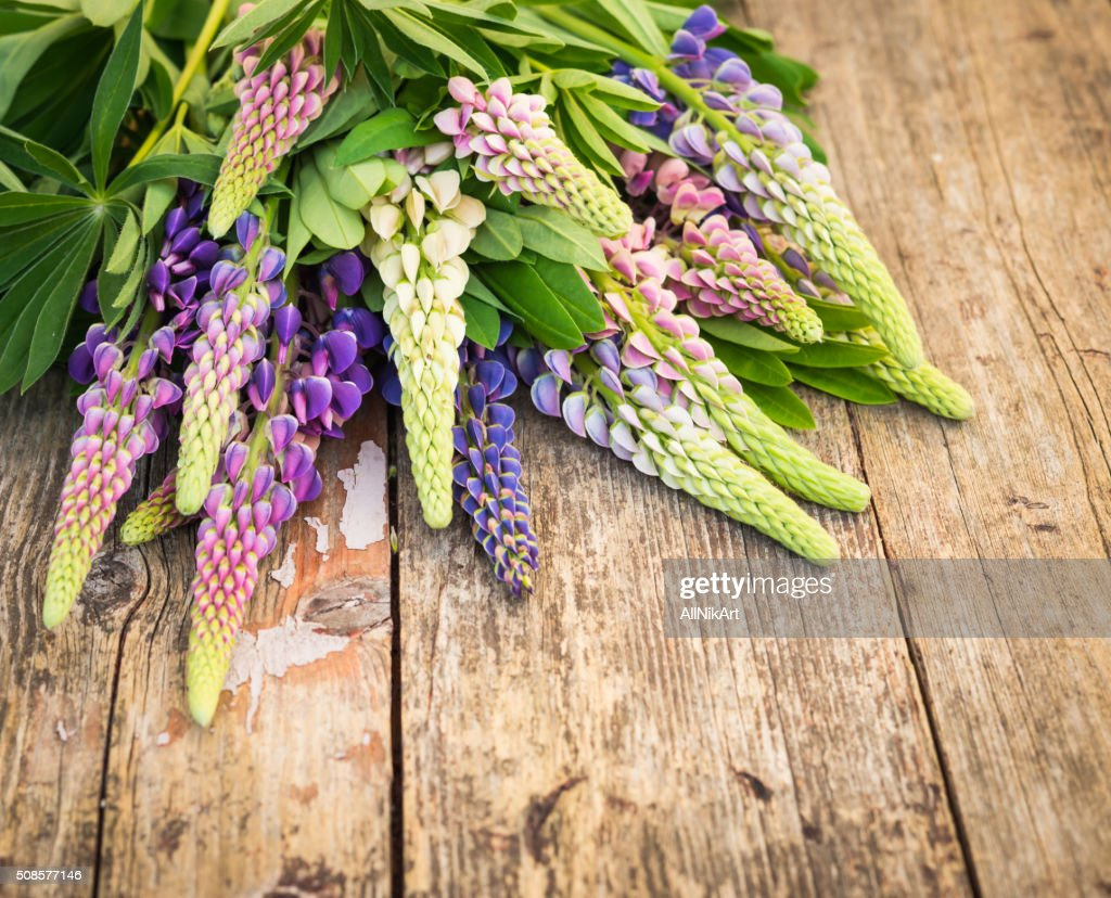 Wildflowers. Lupine flowers on old shabby wooden table : Stockfoto