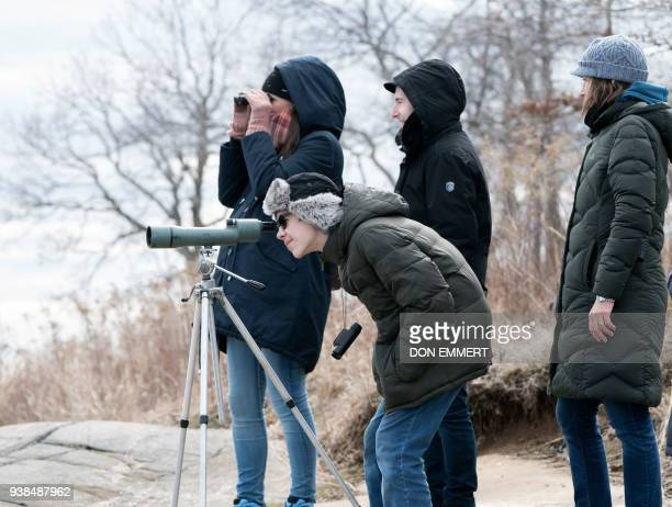Wildlife enthusiasts view Harbor Seals through a 15X spotting scope March 10 2018 near Orchard Beach in New York From coyotes in the Bronx to red...