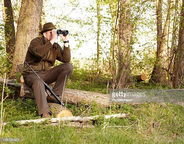 Tiere bei der Jagd braucht Geduld