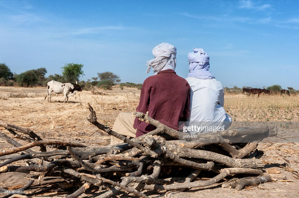 Wildlife in Chad : Stock Photo
