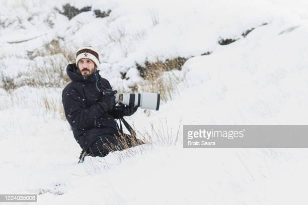 wildlife photographer - reporterstil stock-fotos und bilder