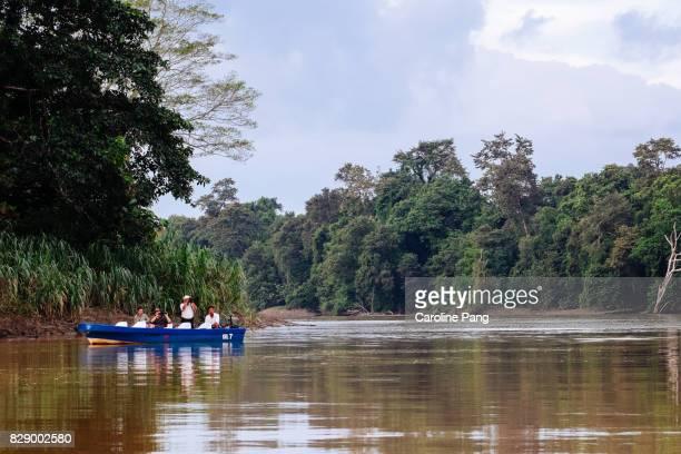 Wildlife watching along the Kinabatangan river, Sabah, Malaysian Borneo.