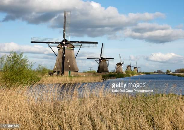 Wildmill in Kinderdijk
