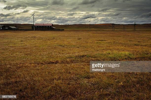 wildness grassland near Irkutsk in Siberia,Russia.