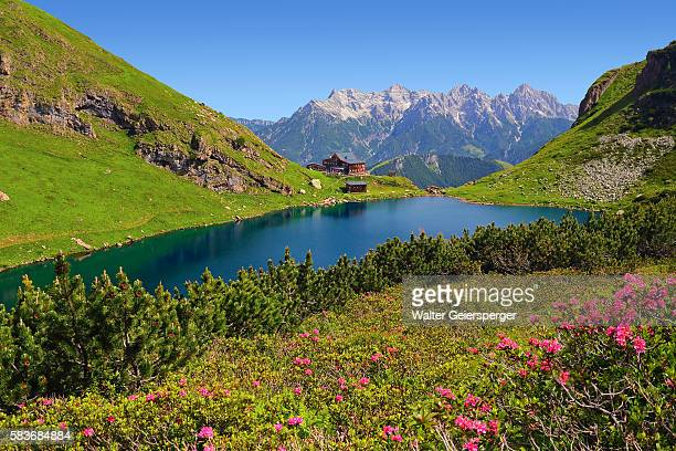 wildsee, austria - kitzbühel stock pictures, royalty-free photos & images