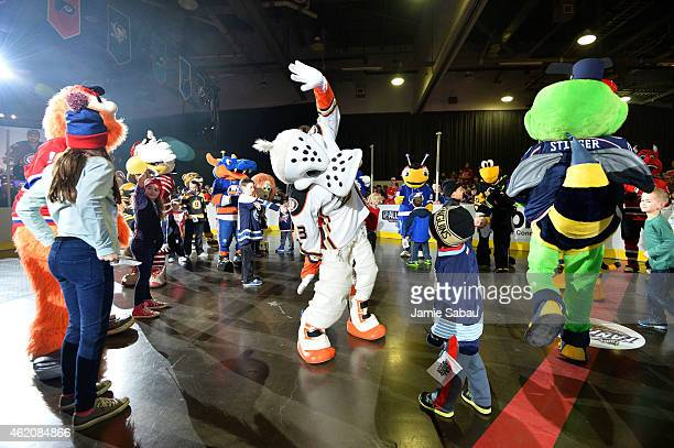 Wildwing of the Anaheim Ducks interacts with a young fan during the mascot showdown as part of the 2015 NHL AllStar Weekend at York Rink on January...
