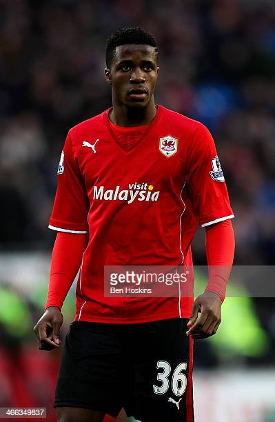 Wilfred Zaha of Cardiff looks on during the Barclays Premier League match between Cardiff City and Norwich City at Cardiff City Stadium on February 1...