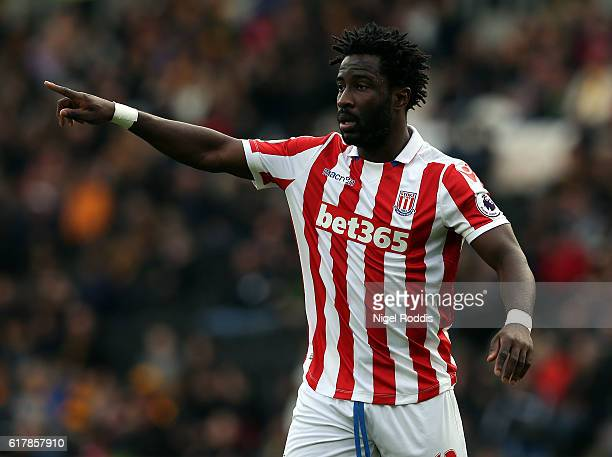 Wilfried Bony of Stoke City during the Premier League match between Hull City and Stoke City at KC Stadium on October 22 2016 in Hull England