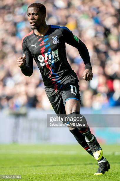 Wilfried Zaha of Crystal Palace looks on during the Premier League match between Brighton Hove Albion and Crystal Palace at American Express...