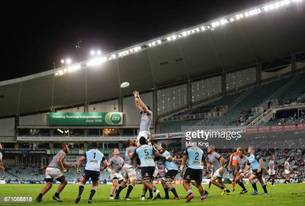 Wilhelm van der Sluys of the Kings jumps at the lineout during the round nine Super Rugby match between the Waratahs and the Kings at Allianz Stadium...