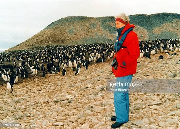 Wilhelm Wieben Kreuzfahrt MSHanseatic Falkland Inseln/AntarktisMeer Pinguine