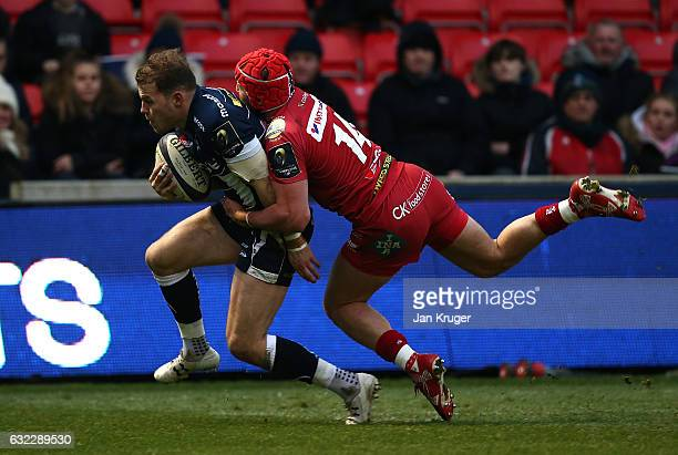 Will Addison of Sale Sharks goes over for a try with DTH van der Merwe of Scarlets on his back during the European Rugby Champions Cup match between...