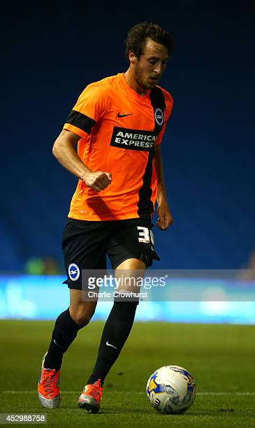 Will Buckley of Brighton during the Pre Season Friendly match between Brighton Hove Albion and Southampton at The Amex Stadium on July 31 2014 in...