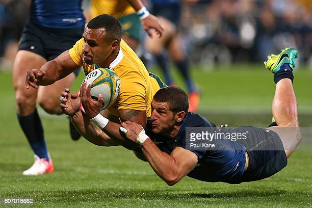 Will Genia of Australia dives for a try against Tomas Cubelli of Argentina during the Rugby Championship match between the Australian Wallabies and...