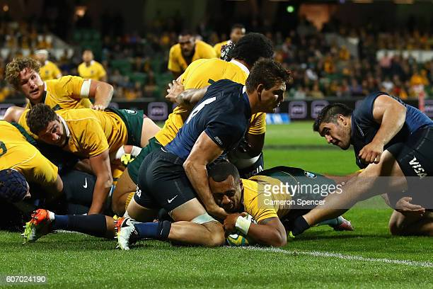 Will Genia of the Wallabies scores a try during the Rugby Championship match between the Australian Wallabies and Argentina at nib Stadium on...