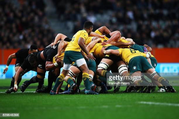 Will Genia of the Wallabies waits for ball at the back of the scrum during The Rugby Championship Bledisloe Cup match between the New Zealand All...