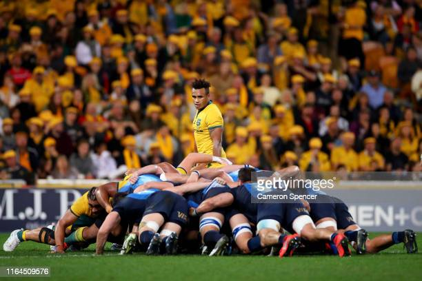 Will Genia of the Wallabies watches a scrum during the 2019 Rugby Championship Test Match between Australia and Argentina at Suncorp Stadium on July...