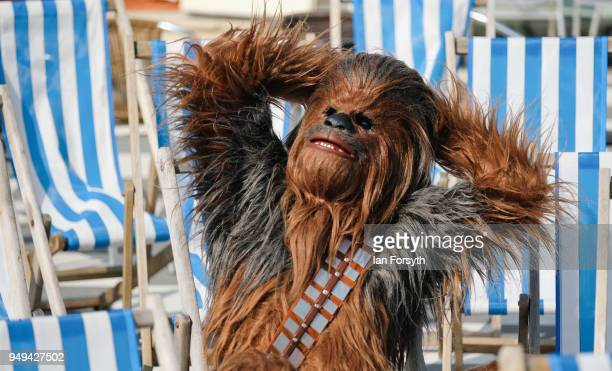 Will Hyde from Darlington relaxes as Chewbacca as he attends the Scarborough SciFi event held at the seafront Spa Complex on April 21 2018 in...