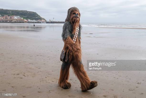 Will Hyde from Darlington wears the costume of the Chewbacca character from the movie Star Wars as he walks across the beach on the first day of the...