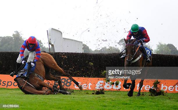 Will Kennedy riding Leath Acra Mor clears the last to win The 32Red Beginners' Steeple Chase as Tony McCoy riding Rendl Beach falls at Fontwell...