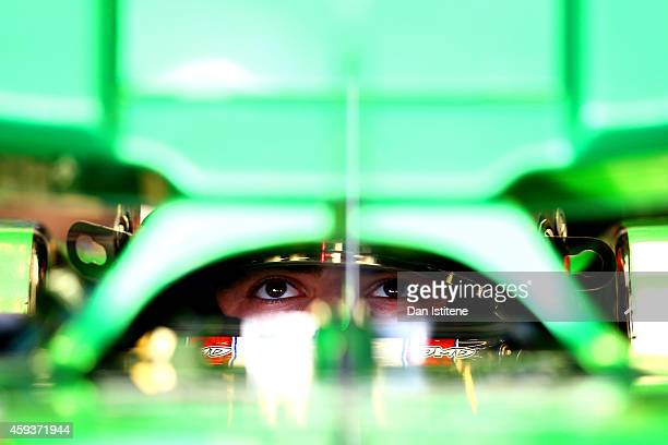Will Stevens of Great Britain and Caterham sits in his car in the garage during practice ahead of the Abu Dhabi Formula One Grand Prix at Yas Marina...