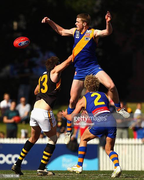 Will Sullivan of the Tigers contests a centre bounce with Jordan Roughead of the Seagulls during the VFL preliminary Final match between Williamstown...