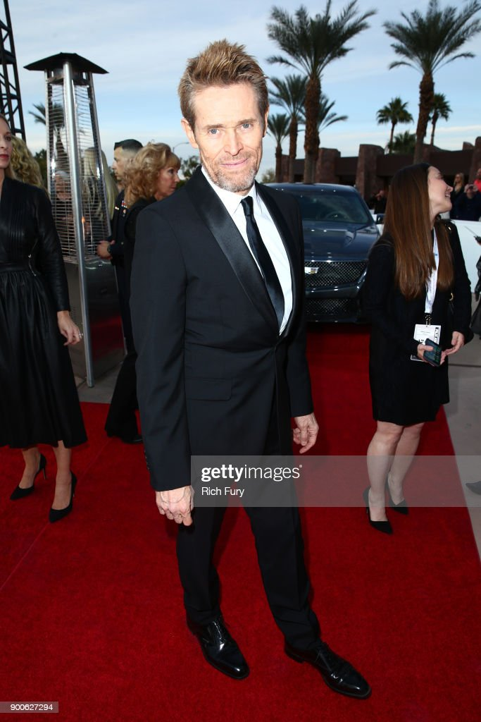 29th Annual Palm Springs International Film Festival Awards Gala - Red Carpet