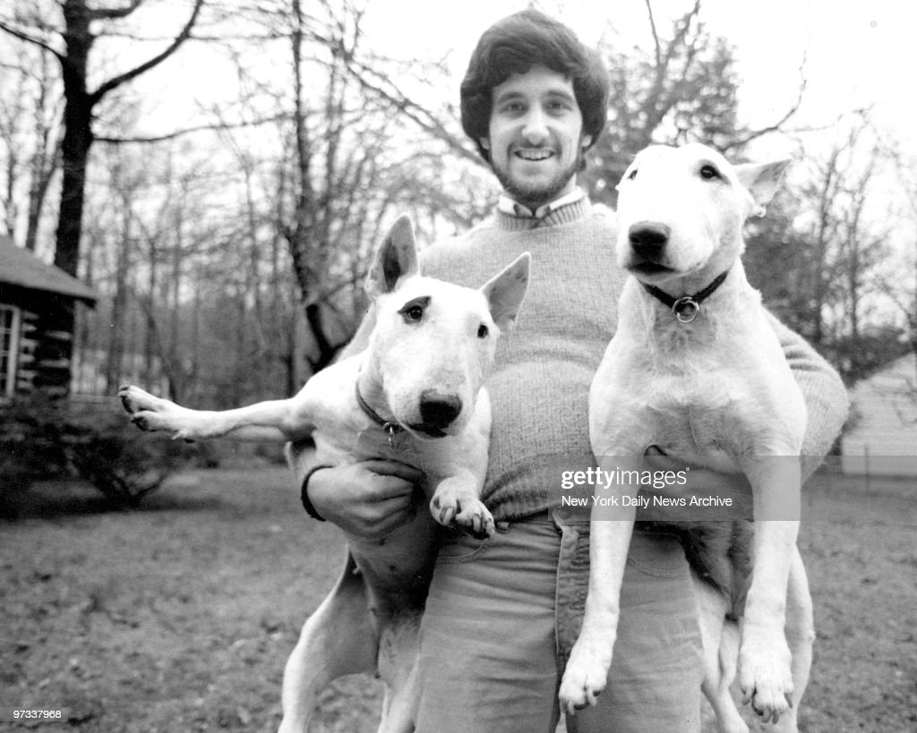 "William Berloni and two Bull Terriers who appear in ""Oliver! : ニュース写真"