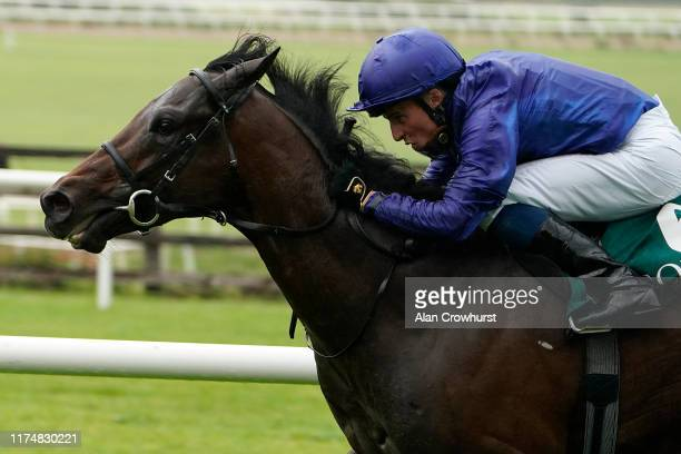William Buick riding Pinatubo win The Goffs Vincent O'Brien National Stakes at Curragh Racecourse on September 15 2019 in Kildare Ireland