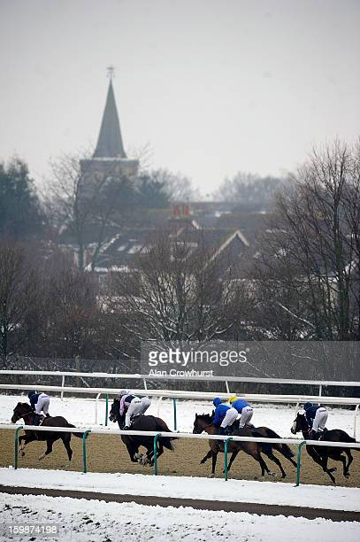 William Carson riding Harry Buckle on their way to winning The Lingfield Park Marriott Hotel Handicap Stakes at Lingfield racecourse on January 22...