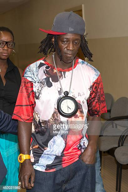 William Drayton also know as Flavor Flav appears in court for a hearing after his arrest on January 9 2014 for speeding and driving under several...