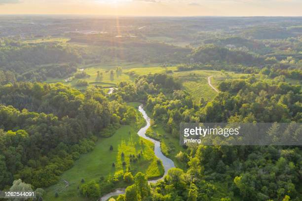 william granger greenway at boyd conservation park in summer, woodbridge, ontario, canada - ontario canada stock pictures, royalty-free photos & images