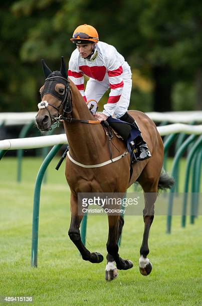 William Hill Ayr Gold Cup Jockey Daniel Tudhope riding Highland Acclaim on September 19 2015 in Ayr Scotland