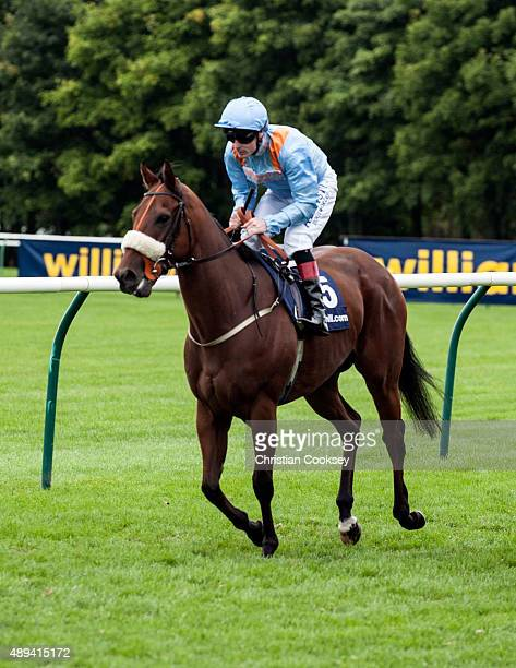 William Hill Ayr Gold Cup Jockey Pat Smullen riding Lexington Abbey on September 19 2015 in Ayr Scotland