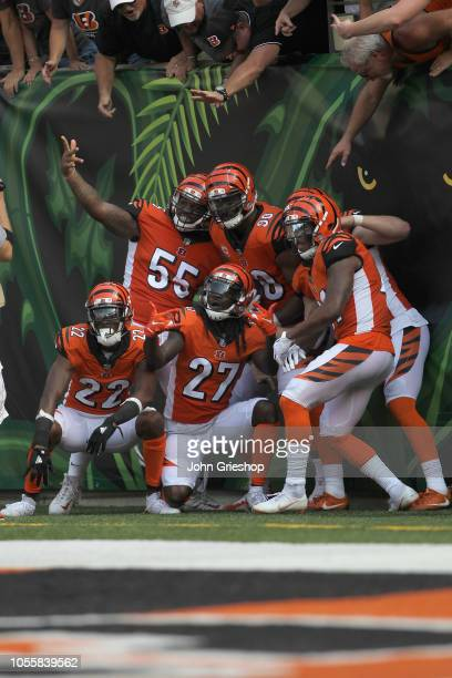 William Jackson Vontaze Burfict Dre Kirkpatrick and Michael Johnson of the Cincinnati Bengals celebrate a touchdown during their game against the...