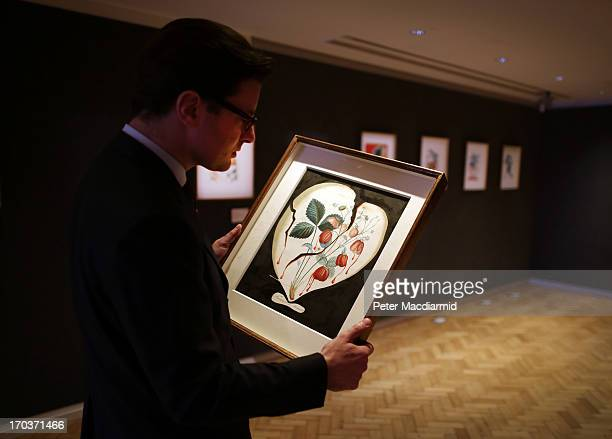 William O'Reilly Director Impressionist and Modern Art at Bonham's inspects Salvadore Dali's watercolour 'Coeur de Fraises' on June 12 2013 in London...