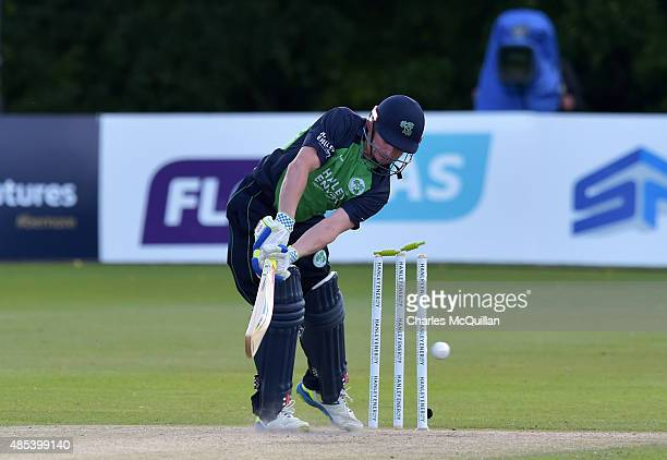 William Porterfield of Ireland is clean bowled by Mitchell Starc during the ODI cricket game between Ireland and Australia at Stormont cricket ground...