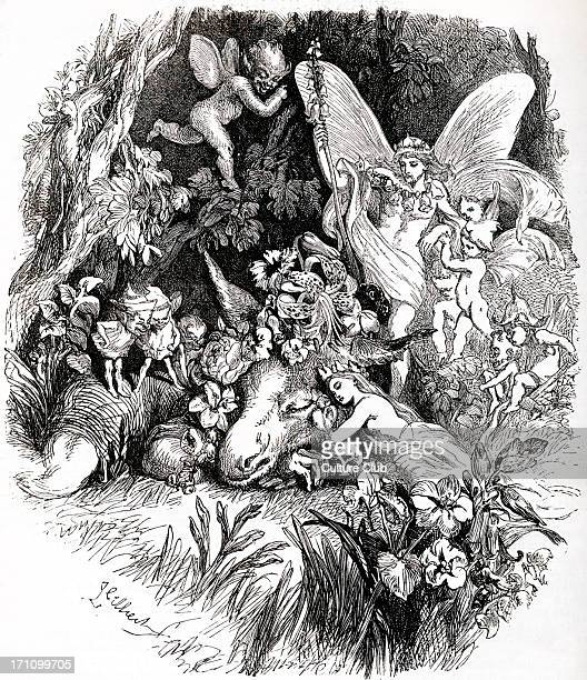 William Shakespeare 's play 'A Midsummernight's Dream' Act IV Scene I Tatiana Bottom Puck and fairies in the wood Engraving of scene English poet and...