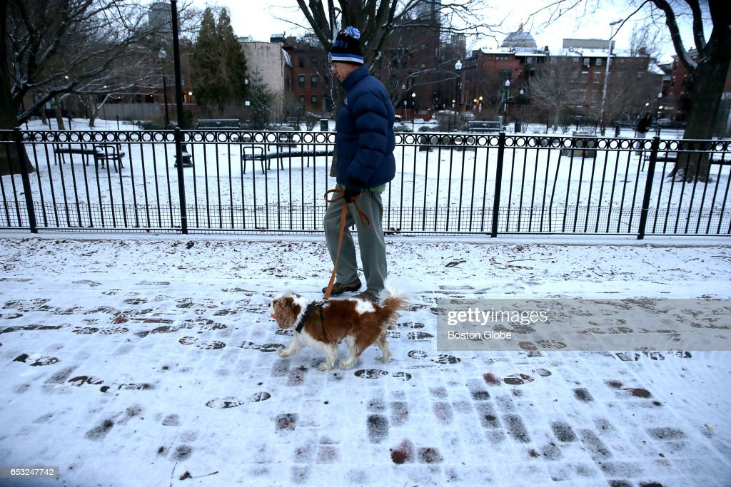 William Whelan and his dog Angus are out for a walk in Boston's South End as a winter storm arrives in the region on Mar. 14, 2017.