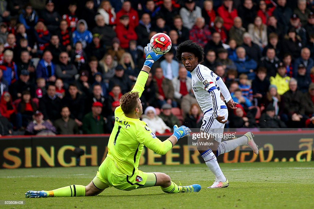 Willian of Chelsea scores past Artur Boruc of Bournemouth to make it 3-1 during the Barclays Premier League match between A.F.C. Bournemouth and Chelsea at the Vitality Stadium on April 23, 2016 in Bournemouth, United Kingdom.