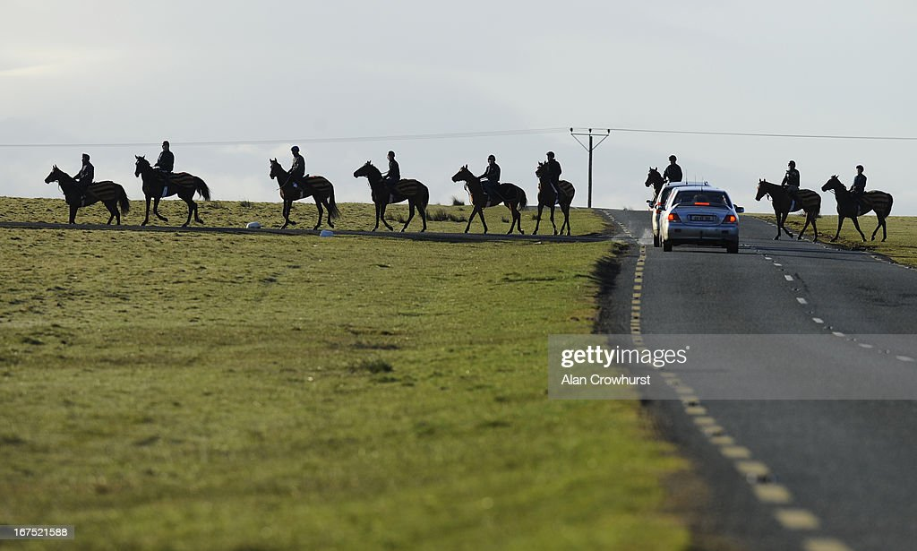 Willie McCreery's string on their way back to the yard on The Curragh training grounds on April 26, 2013 in Kildare, Ireland.