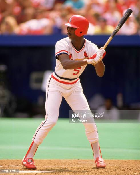 Willie McGee of the St Louis Cardinals bats during an MLB game at Busch Stadium in St Louis Missouri during the 1989 season