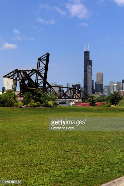 Willis Tower and 311 S Wacker Drive stands out amongst other downtown Chicago buildings photographed from Ping Tom Memorial Park in Chinatown in...